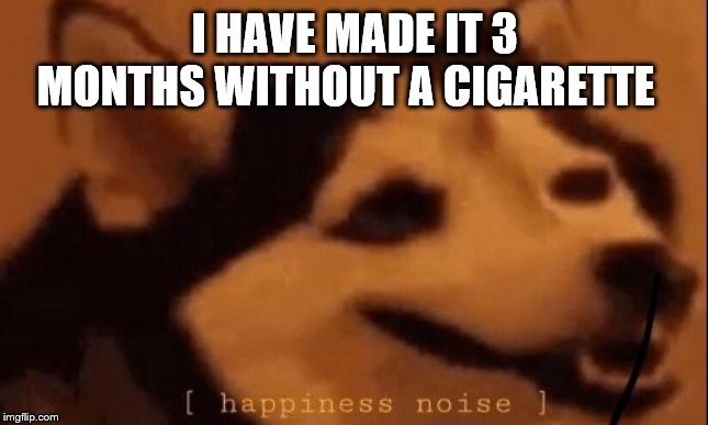 [happiness noise] | I HAVE MADE IT 3 MONTHS WITHOUT A CIGARETTE | image tagged in happiness noise | made w/ Imgflip meme maker