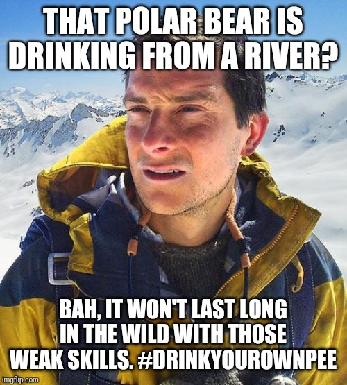 Bear Grylls |  THAT POLAR BEAR IS DRINKING FROM A RIVER? BAH, IT WON'T LAST LONG IN THE WILD WITH THOSE WEAK SKILLS. #DRINKYOUROWNPEE | image tagged in memes,bear grylls | made w/ Imgflip meme maker
