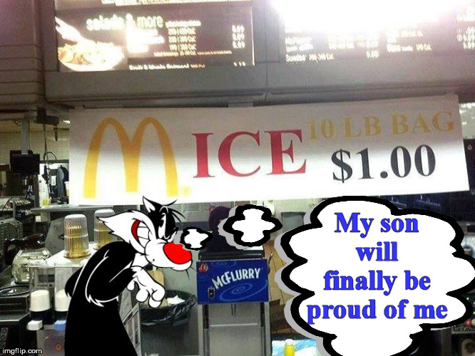 Sylvester finally might get some mice. |  My son will finally be proud of me | image tagged in sylvester the cat,mice,pride | made w/ Imgflip meme maker