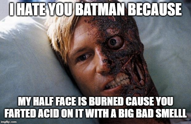 Two Face |  I HATE YOU BATMAN BECAUSE; MY HALF FACE IS BURNED CAUSE YOU FARTED ACID ON IT WITH A BIG BAD SMELLL | image tagged in two face | made w/ Imgflip meme maker