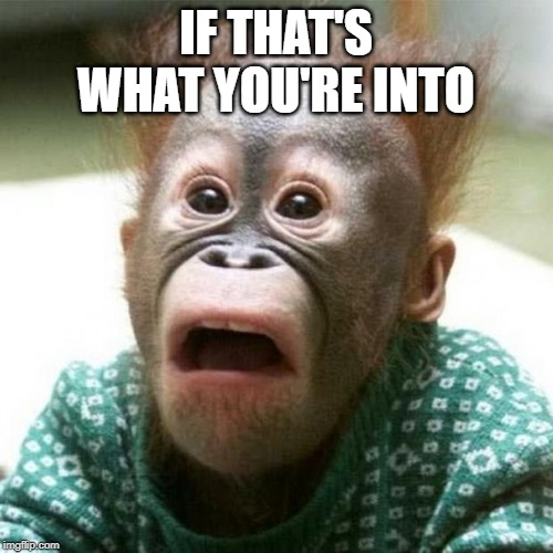 Shocked Monkey | IF THAT'S WHAT YOU'RE INTO | image tagged in shocked monkey | made w/ Imgflip meme maker
