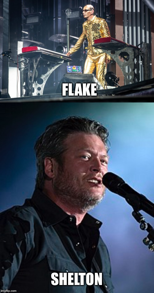 It's funny how my mind works sometimes | FLAKE SHELTON | image tagged in blake shelton,flake | made w/ Imgflip meme maker