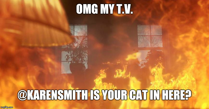 OMG MY T.V. @KARENSMITH IS YOUR CAT IN HERE? | made w/ Imgflip meme maker