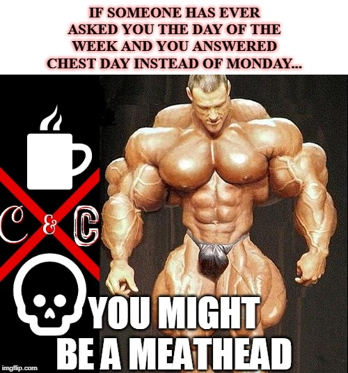 muscle |  IF SOMEONE HAS EVER ASKED YOU THE DAY OF THE WEEK AND YOU ANSWERED CHEST DAY INSTEAD OF MONDAY... YOU MIGHT BE A MEATHEAD | image tagged in muscle | made w/ Imgflip meme maker