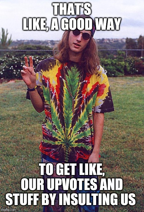 Hippie | THAT'S LIKE, A GOOD WAY TO GET LIKE, OUR UPVOTES AND STUFF BY INSULTING US | image tagged in hippie | made w/ Imgflip meme maker