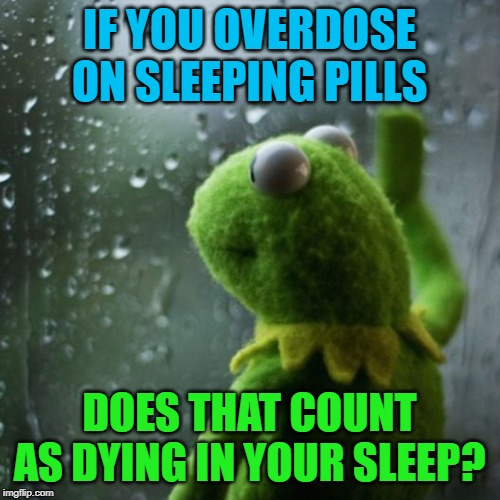 sometimes I wonder  | IF YOU OVERDOSE ON SLEEPING PILLS DOES THAT COUNT AS DYING IN YOUR SLEEP? | image tagged in sometimes i wonder | made w/ Imgflip meme maker