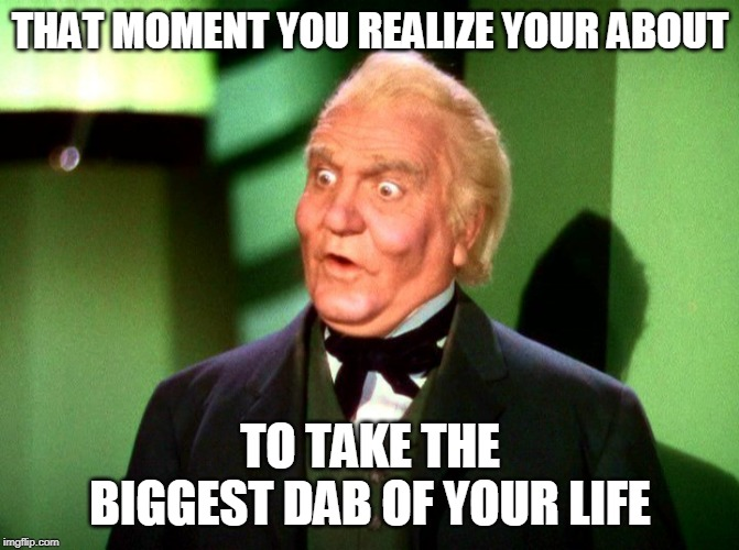 The Wizard of Oz | THAT MOMENT YOU REALIZE YOUR ABOUT TO TAKE THE BIGGEST DAB OF YOUR LIFE | image tagged in the wizard of oz | made w/ Imgflip meme maker