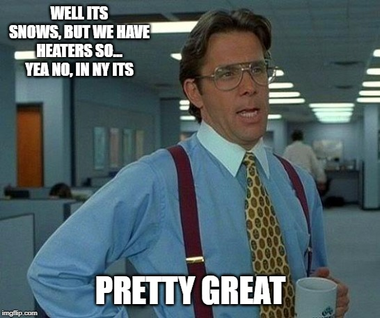 That Would Be Great Meme | WELL ITS SNOWS, BUT WE HAVE HEATERS SO... YEA NO, IN NY ITS PRETTY GREAT | image tagged in memes,that would be great | made w/ Imgflip meme maker