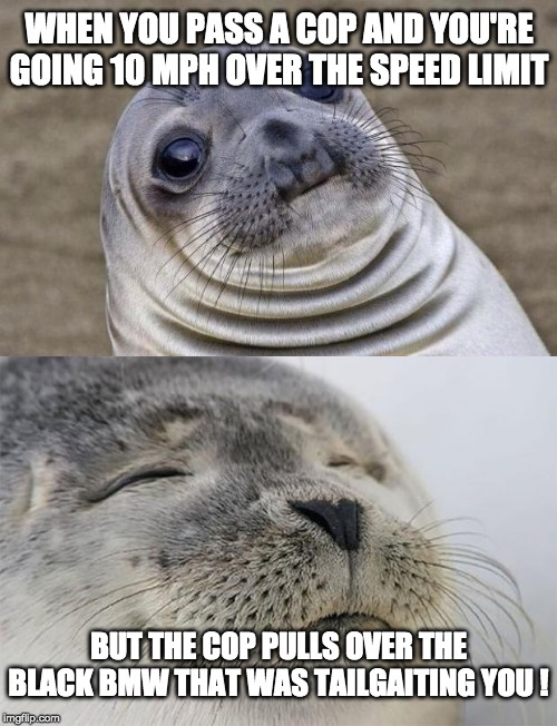 Karma . . . | WHEN YOU PASS A COP AND YOU'RE GOING 10 MPH OVER THE SPEED LIMIT BUT THE COP PULLS OVER THE BLACK BMW THAT WAS TAILGAITING YOU ! | image tagged in memes,awkward moment sealion,satisfied seal | made w/ Imgflip meme maker