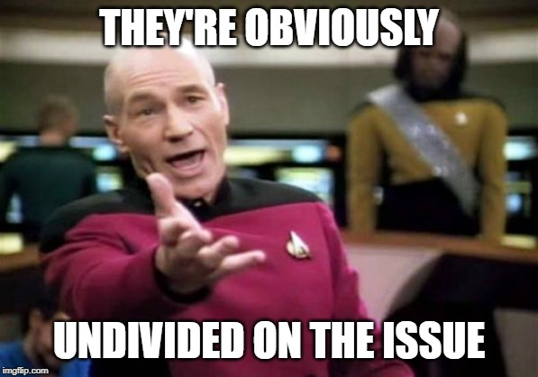 THEY'RE OBVIOUSLY UNDIVIDED ON THE ISSUE | image tagged in memes,picard wtf | made w/ Imgflip meme maker