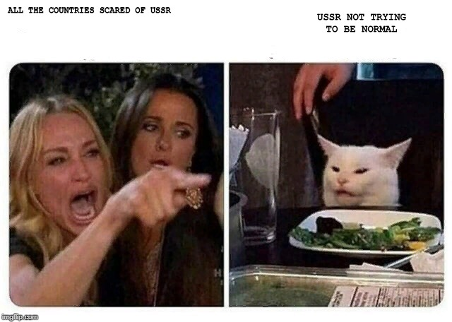 Cat at Dinner | ALL THE COUNTRIES SCARED OF USSR USSR NOT TRYING TO BE NORMAL | image tagged in cat at dinner | made w/ Imgflip meme maker