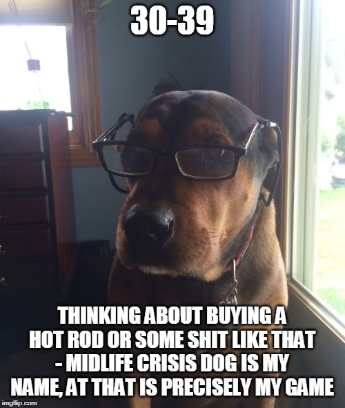 Midlife Crisis Dog | 30-39 THINKING ABOUT BUYING A HOT ROD OR SOME SHIT LIKE THAT - MIDLIFE CRISIS DOG IS MY NAME, AT THAT IS PRECISELY MY GAME | image tagged in midlife crisis dog | made w/ Imgflip meme maker