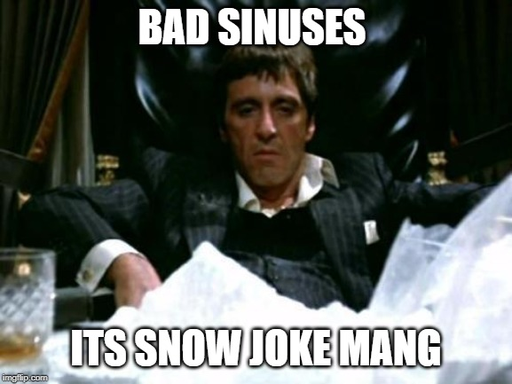 Scarface Cocaine | BAD SINUSES ITS SNOW JOKE MANG | image tagged in scarface cocaine | made w/ Imgflip meme maker