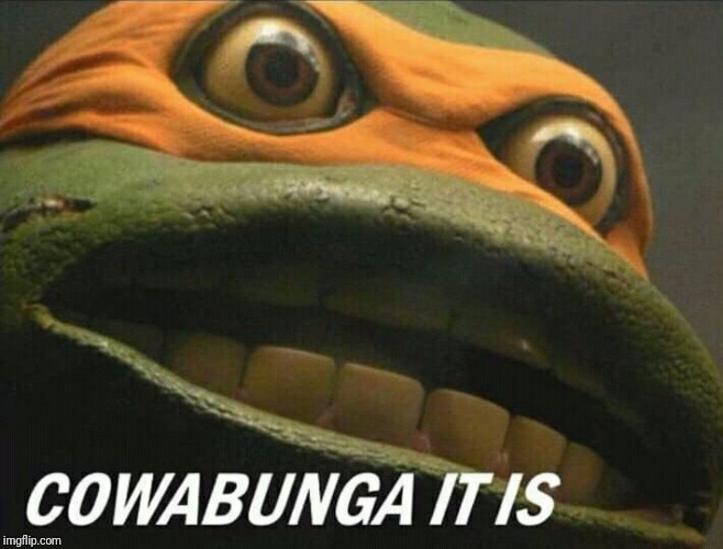 Cowabunga it is | image tagged in cowabunga it is | made w/ Imgflip meme maker