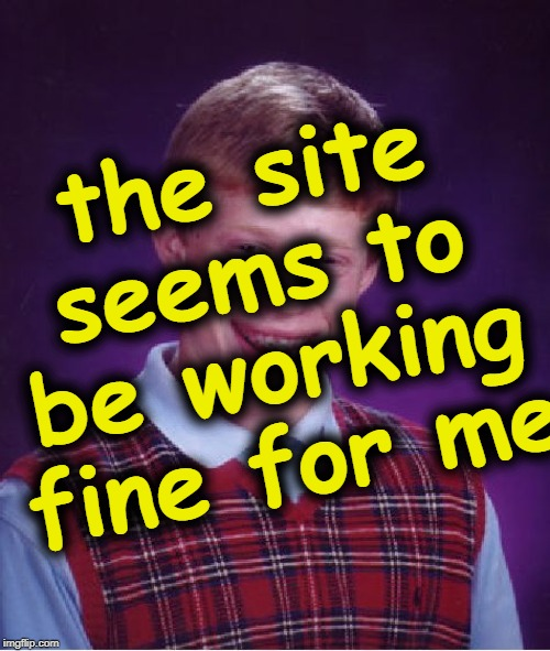 Bad Luck Brian Meme | the site seems to be working fine for me | image tagged in memes,bad luck brian | made w/ Imgflip meme maker