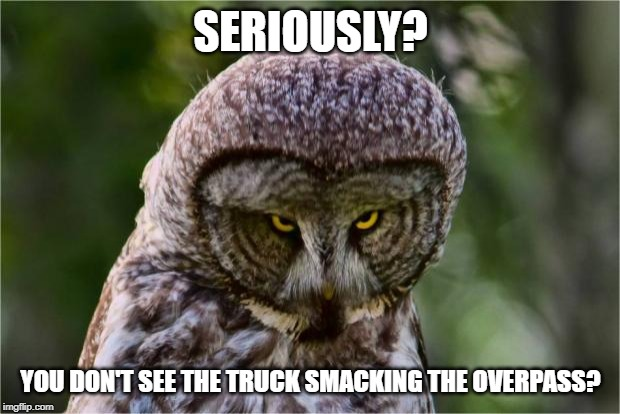 Seriously Owl | SERIOUSLY? YOU DON'T SEE THE TRUCK SMACKING THE OVERPASS? | image tagged in seriously owl | made w/ Imgflip meme maker