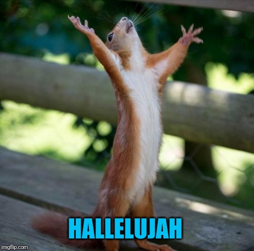finally | HALLELUJAH | image tagged in finally | made w/ Imgflip meme maker