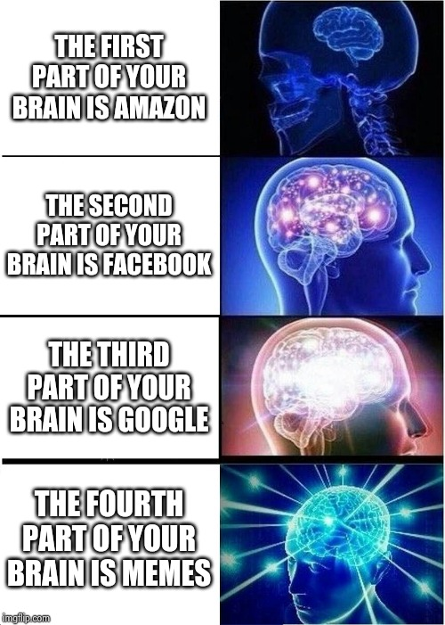 Throwback tuesday: first meme to reach 100 views | THE FIRST PART OF YOUR BRAIN IS AMAZON THE SECOND PART OF YOUR BRAIN IS FACEBOOK THE THIRD PART OF YOUR BRAIN IS GOOGLE THE FOURTH PART OF Y | image tagged in memes,expanding brain | made w/ Imgflip meme maker