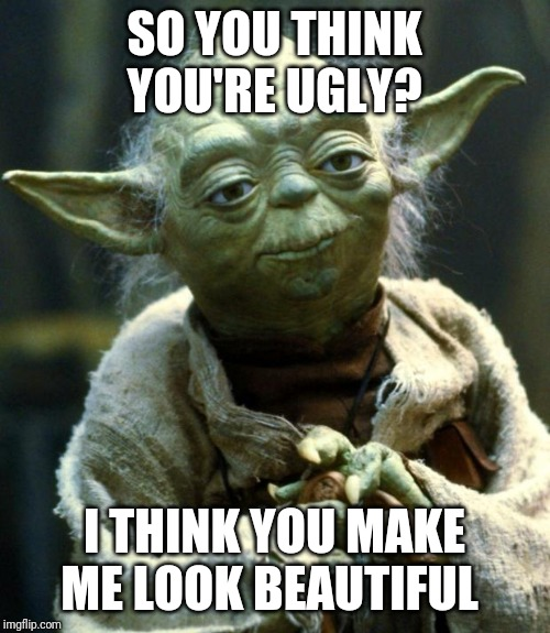 Star Wars Yoda |  SO YOU THINK YOU'RE UGLY? I THINK YOU MAKE ME LOOK BEAUTIFUL | image tagged in memes,star wars yoda | made w/ Imgflip meme maker