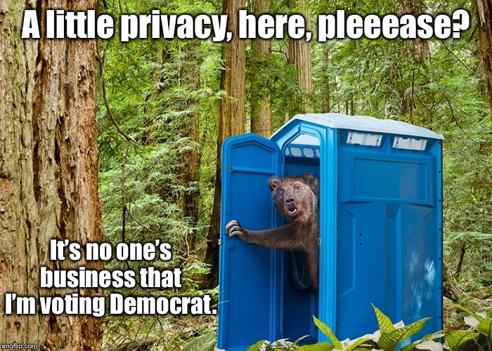 Secret Ballot time is coming!!! | A little privacy, here, pleeease? It's no one's business that I'm voting Democrat. | image tagged in bear,porta-potty,democrat,voting,liberal,privacy | made w/ Imgflip meme maker