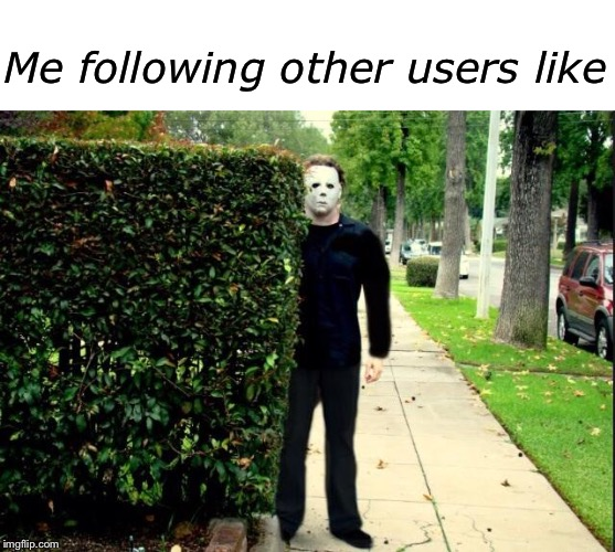 Oh great, now there's a 'follow' option for users | Me following other users like | image tagged in blank white template,michael myers bush stalking | made w/ Imgflip meme maker