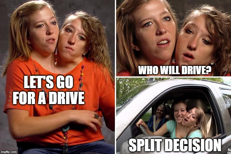Siamese twins Week | LET'S GO FOR A DRIVE WHO WILL DRIVE? SPLIT DECISION | image tagged in siamese twins | made w/ Imgflip meme maker