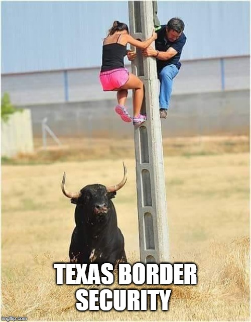 Don't take any bull! | TEXAS BORDER SECURITY | image tagged in border patrol,border wall,security,bull,chased,memes | made w/ Imgflip meme maker