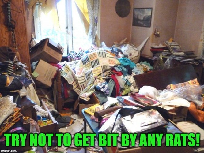 messy room | TRY NOT TO GET BIT BY ANY RATS! | image tagged in messy room | made w/ Imgflip meme maker