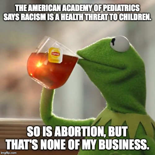 Liberalism is a health threat to everyone in America. | THE AMERICAN ACADEMY OF PEDIATRICS SAYS RACISM IS A HEALTH THREAT TO CHILDREN. SO IS ABORTION, BUT THAT'S NONE OF MY BUSINESS. | image tagged in 2019,american academy of pediatrics,abortion,liberals,liberalism,lies | made w/ Imgflip meme maker