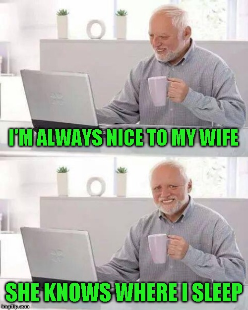 Inspired by Nixie. You know what I'm talking about | I'M ALWAYS NICE TO MY WIFE SHE KNOWS WHERE I SLEEP | image tagged in memes,hide the pain harold | made w/ Imgflip meme maker