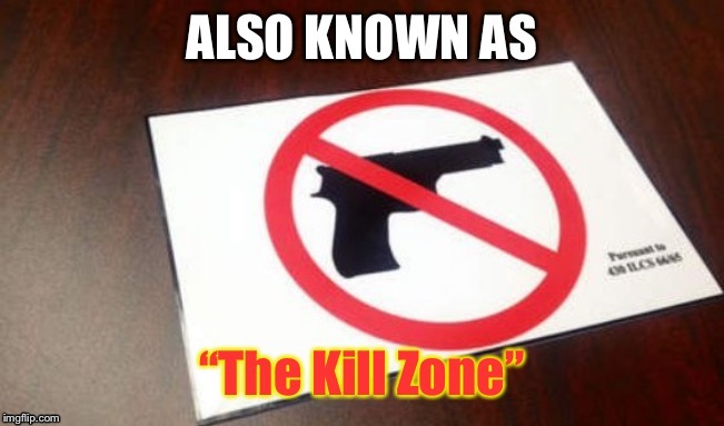 You know I'm right.  Ever heard of domestic terror at a shooting match? | image tagged in domestic terrorists,gun free zone,kill zone,defenseless,victims | made w/ Imgflip meme maker