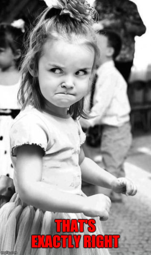 Angry Toddler Meme | THAT'S EXACTLY RIGHT | image tagged in memes,angry toddler | made w/ Imgflip meme maker