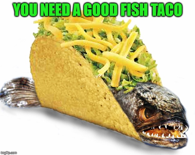 Fish Taco | YOU NEED A GOOD FISH TACO | image tagged in fish taco | made w/ Imgflip meme maker