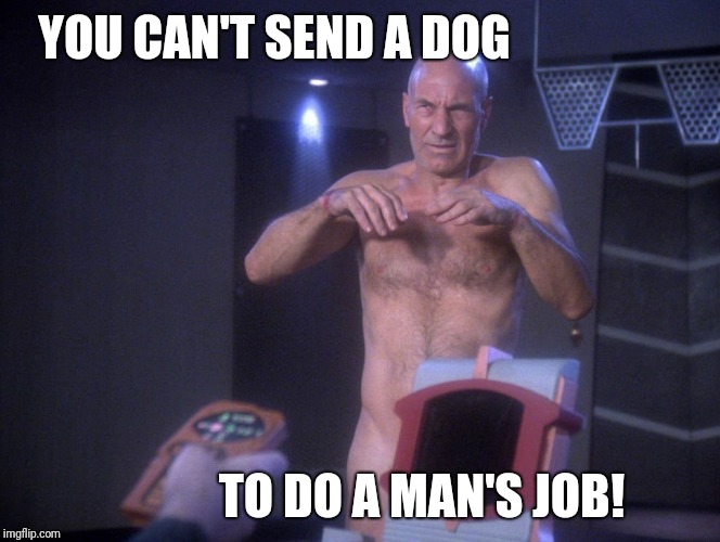 YOU CAN'T SEND A DOG TO DO A MAN'S JOB! | made w/ Imgflip meme maker
