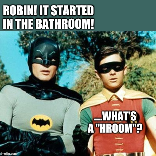 "Batman and Robin | ROBIN! IT STARTED IN THE BATHROOM! ....WHAT'S A ""HROOM""? 
