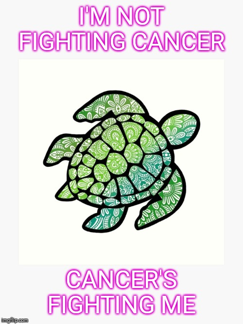 I'm not fighting cancer, Cancer's fighting ME | I'M NOT FIGHTING CANCER CANCER'S FIGHTING ME | image tagged in cancer | made w/ Imgflip meme maker