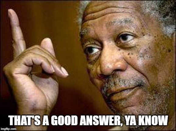 Good Answer | THAT'S A GOOD ANSWER, YA KNOW | image tagged in morgan freeman,good answer,ya know | made w/ Imgflip meme maker