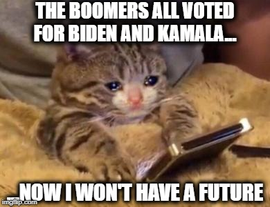 Biden and Kamala suck. Vote YANG | THE BOOMERS ALL VOTED FOR BIDEN AND KAMALA... ...NOW I WON'T HAVE A FUTURE | image tagged in biden,kamala,bernie,yang,trump | made w/ Imgflip meme maker