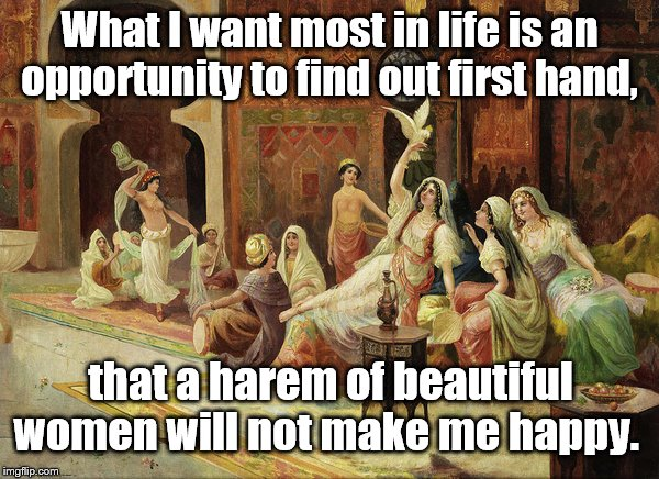 This has been done with money, so I changed it up. | What I want most in life is an opportunity to find out first hand, that a harem of beautiful women will not make me happy. | image tagged in funny | made w/ Imgflip meme maker