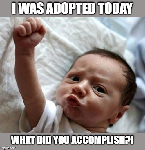 Welcome to the Adoption Stream! | I WAS ADOPTED TODAY WHAT DID YOU ACCOMPLISH?! | image tagged in adoption,yay,kate the grate | made w/ Imgflip meme maker