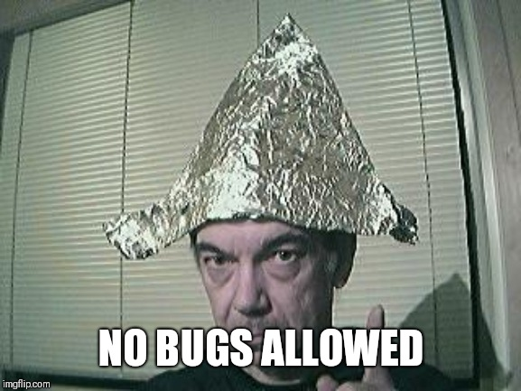 tin foil hat | NO BUGS ALLOWED | image tagged in tin foil hat | made w/ Imgflip meme maker