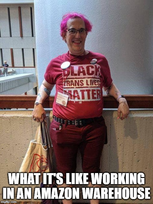 The average Amazonian | WHAT IT'S LIKE WORKING IN AN AMAZON WAREHOUSE | image tagged in amazon,black lives matter,transgender,civil rights,workplace,pink hair | made w/ Imgflip meme maker