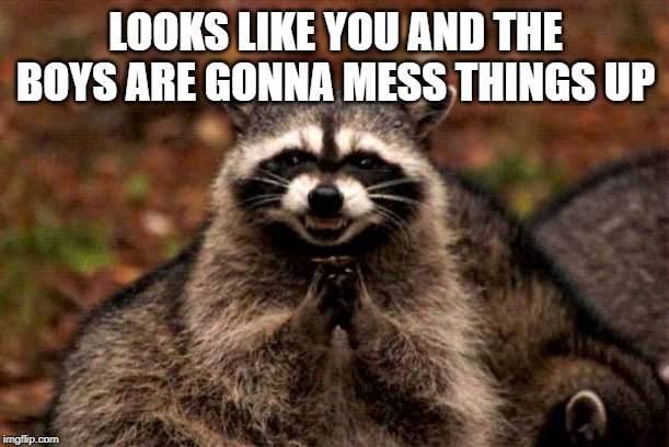 Evil Plotting Raccoon Meme | LOOKS LIKE YOU AND THE BOYS ARE GONNA MESS THINGS UP | image tagged in memes,evil plotting raccoon | made w/ Imgflip meme maker
