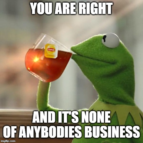 But Thats None Of My Business Meme | YOU ARE RIGHT AND IT'S NONE OF ANYBODIES BUSINESS | image tagged in memes,but thats none of my business,kermit the frog | made w/ Imgflip meme maker