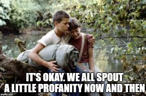 IT'S OKAY. WE ALL SPOUT A LITTLE PROFANITY NOW AND THEN | made w/ Imgflip meme maker
