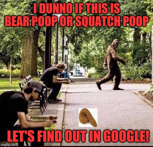 Squatch | I DUNNO IF THIS IS BEAR POOP OR SQUATCH POOP LET'S FIND OUT IN GOOGLE! | image tagged in memes,funny,dank,sasquatch,poop | made w/ Imgflip meme maker
