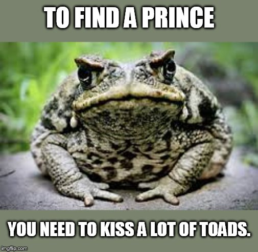 And they're horny toads too. | TO FIND A PRINCE YOU NEED TO KISS A LOT OF TOADS. | image tagged in toad's crazy insane meme | made w/ Imgflip meme maker
