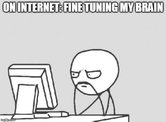 Computer Guy Meme | ON INTERNET: FINE TUNING MY BRAIN | image tagged in memes,computer guy | made w/ Imgflip meme maker