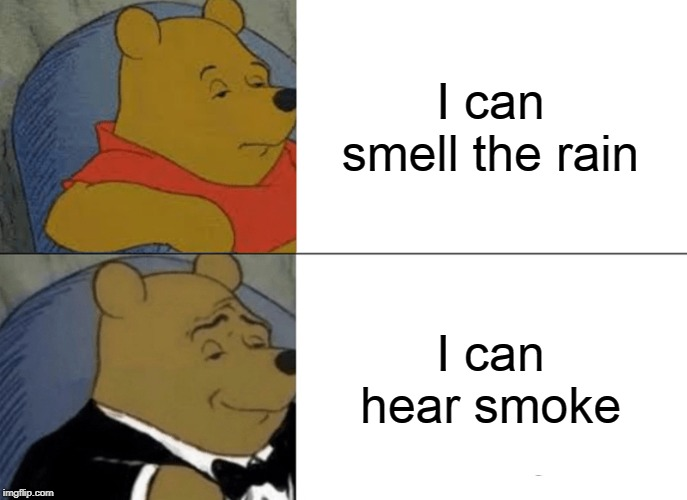 Tuxedo Winnie The Pooh Meme | I can smell the rain I can hear smoke | image tagged in memes,tuxedo winnie the pooh | made w/ Imgflip meme maker
