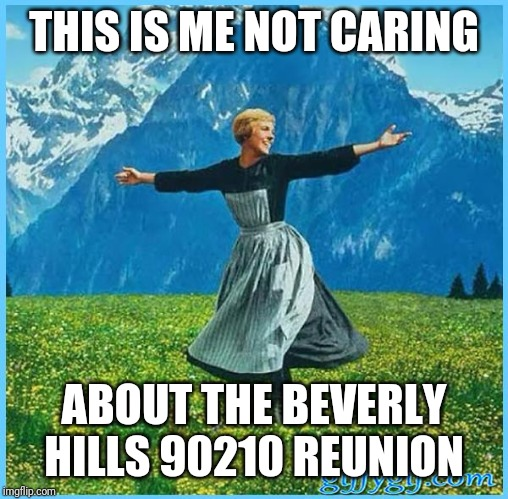 This is me not caring | THIS IS ME NOT CARING ABOUT THE BEVERLY HILLS 90210 REUNION | image tagged in this is me not caring | made w/ Imgflip meme maker